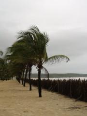 Goa0001.jpg