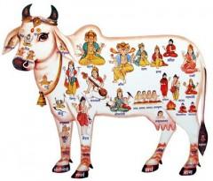 Panchagavya,vache,vache sacrée,hindouisme,bouse,urine,lait,ghee,buffalo,buffle,bufflonne,vache laitière,environnement,lait,pet,pet de bœuf,méthane,abattage,bœuf,viande,végétarien,non-végétarien,Constitution,loi,buffle d'eau,Kambala,Kerala,course de buffles