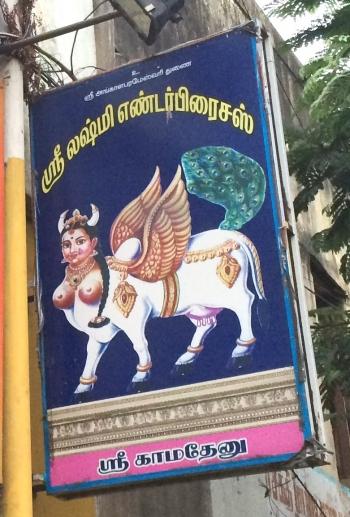 Inde,Kamadhenu,religion,vache,vache sacrée,mère des vaches