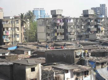 Inde,Mumbai,Bombay,festival,Makar Sankranti,cerf-volants