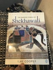 Inde,Rajasthan,Shekhawati,Shekawati,Mandawa,havelis,peintures